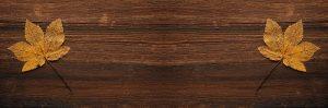 Olej na drevo a záhradný stôl