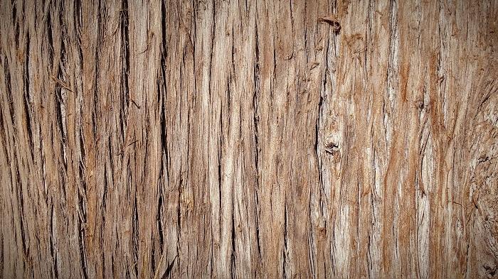Kotly na drevo v modernom dizajne